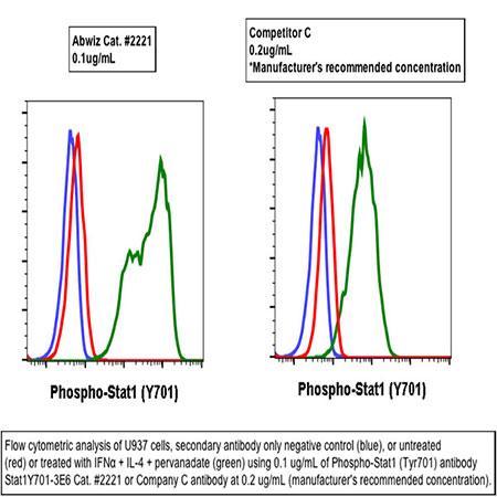 Purified anti-Phospho-Stat1 (Tyr701) rabbit mAb