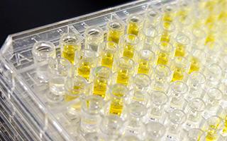 Phage Display Antibody Library Laboratory Equipment