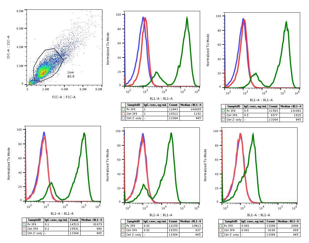 Abwiz Bio antibodies exhibit strong, specific binding in flow cytometry assays